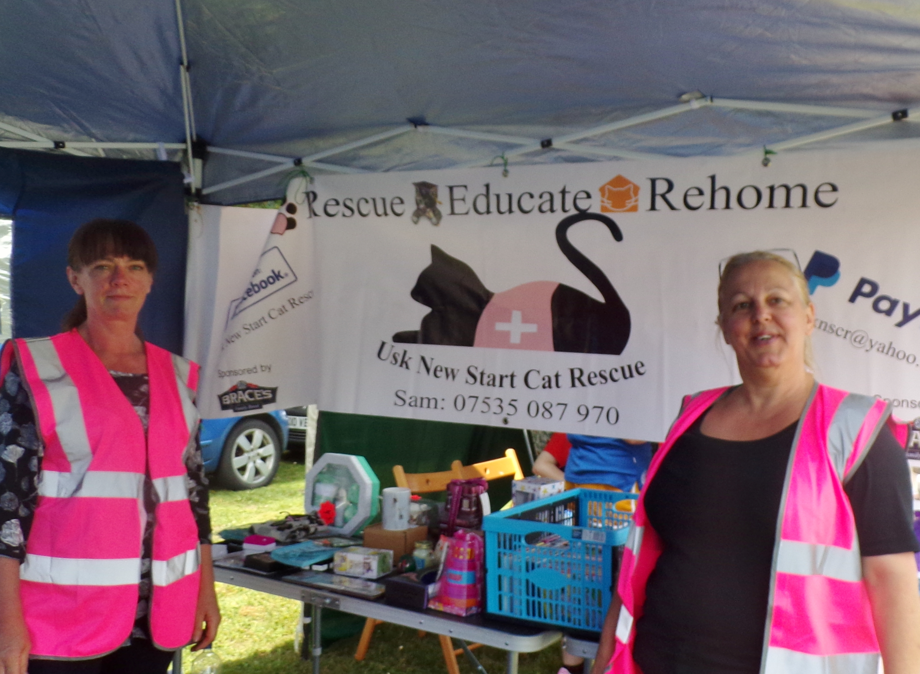 usk new start cat rescue stand